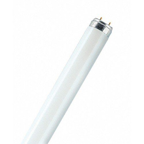 Лампа люминесцентная Osram L36W/640 G13 4000K